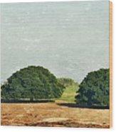 Trees On Field Wood Print