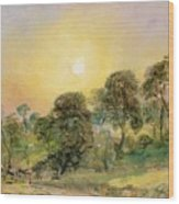 Trees On Hampstead Heath At Sunset Wood Print