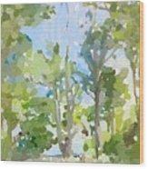 Trees On Ski Island, Banana River, Cape Canaveral, Fl. Wood Print
