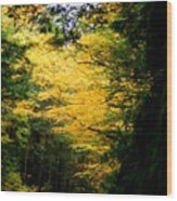 Trees Over The Flumes Gorge Wood Print