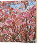 Trees Pink Spring Dogwood Flowers Baslee Troutman Wood Print