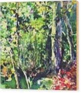 Trees Wood Print