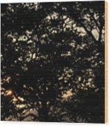 Trees - San Salvador II Wood Print