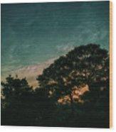 Trees - San Salvador Iv Wood Print