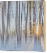 Trees, Snow And Golden Light Abstract Wood Print