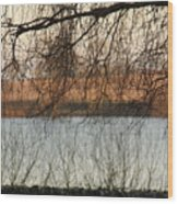 Trees With A Reflection Wood Print