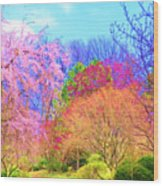 Trees With Color Wood Print