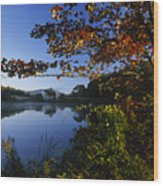 Trees With Fall Colors Along The Still Wood Print by Michael Melford