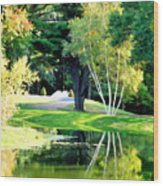 Trees With Mirror Lake 2 Wood Print