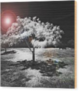 Trees With Science Fiction Sky 91774031 Wood Print