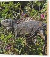 Treetop Iguana Wood Print