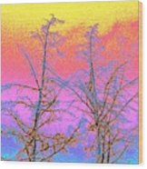 Treetops 1 Wood Print