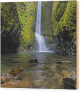 Trek To Lower Oneonta Falls Wood Print