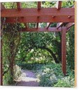 Trellised Walkway  Wood Print by Deborah  Crew-Johnson