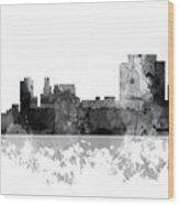 Trenton New Jersey Skyline Wood Print