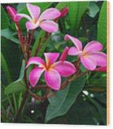 Tres Floras Wood Print