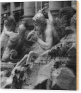 Trevi Fountain Detail 2 Wood Print