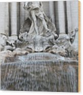 Trevi Fountain Rome Wood Print