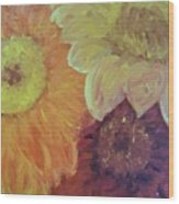 Tri Colored Daisies Wood Print