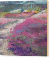 Trial Gardens In Fort Collins Wood Print