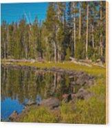 Triangle Lake Wood Print