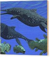 Triassic Shonisaurus Marine Reptile Wood Print