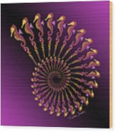 Tribal Seahorse Spiral Shell Wood Print
