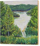 Tributary Salt Fork Lake Ohio Wood Print