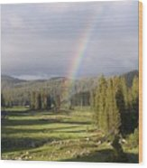 Trickle Park Rainbow Wood Print