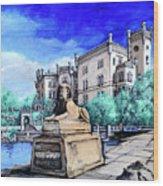 Trieste  Castello Di Miramare Wood Print