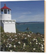 Trinidad Lighthouse California Wood Print