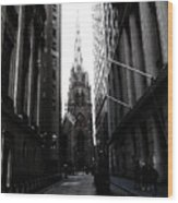 Trinity Church New York City Wood Print