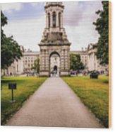 Trinity College Dublin  Wood Print