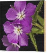 Trio In Purple Wood Print