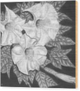 Trio Of Heavenly Blossoms Wood Print