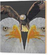 Triple Eagle Wood Print