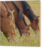 Triple Mustang Treat Wood Print