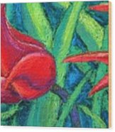 Triple Tease Tulips Wood Print