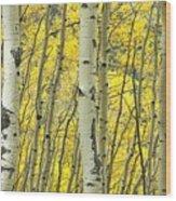 Triple Vision Wood Print