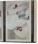Triptic White Orchids On Light Background Wood Print