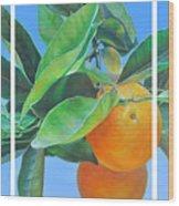 Triptyque Orange Wood Print