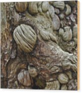 Trolls Skin Wood Print