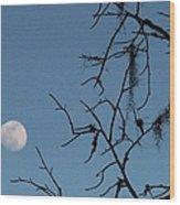Trompe L Oeil Moon Wood Print