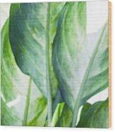 Tropic Abstract  Wood Print