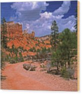 Tropic Canyon Bridge In Bryce Canyon Np Utah Wood Print
