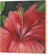 Tropic Fire Wood Print