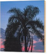 Tropic Sunset In Floirida Wood Print