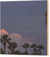 Tropic Twilight Wood Print