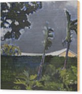 Tropic Wind Wood Print