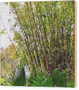 Tropical Bamboo Wood Print
